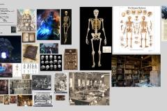 Rileus-research